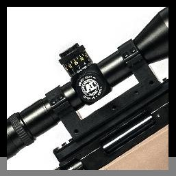 scopesMounts